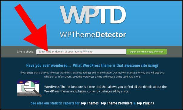 introducir url wpthemedetector
