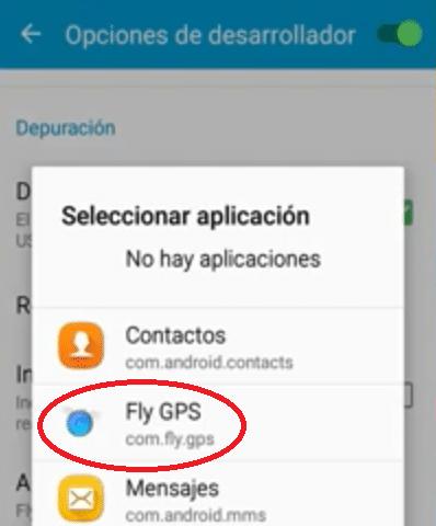 flygps opciones desarrollador