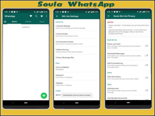 Apariencia Soula WhatsApp Lite